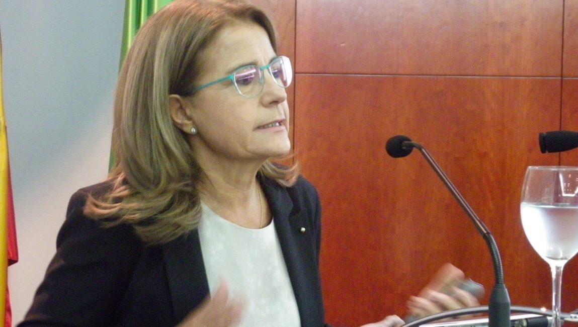 La profesora Meana Mañes interviene en la RACVE. El síndrome del despoblamiento de las colmenas: hipótesis y evidencias