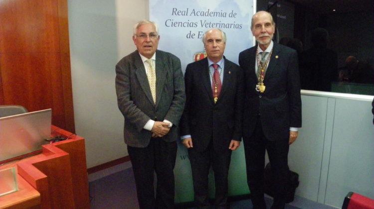 Mesa redonda: La protección jurídica-penal de los animales en España, y la existencia de la conciencia animal