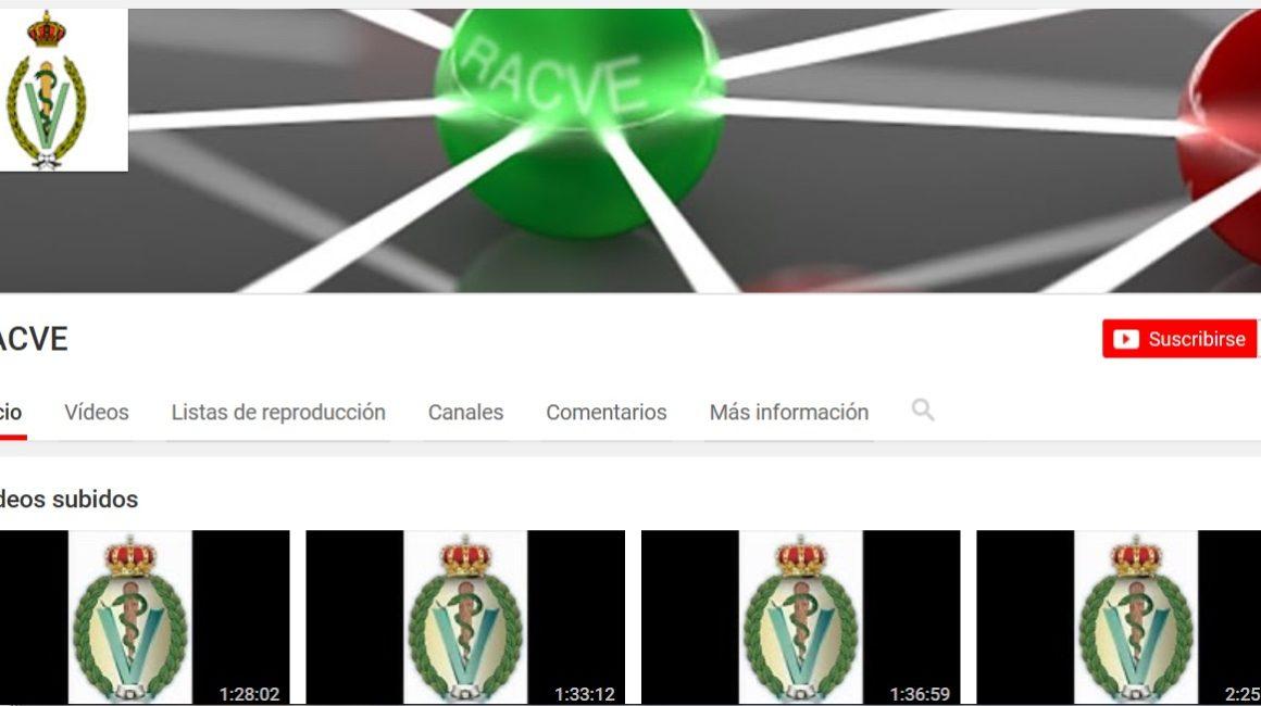 Videos de sesiones académicas: Información canal YouTube-RACVE