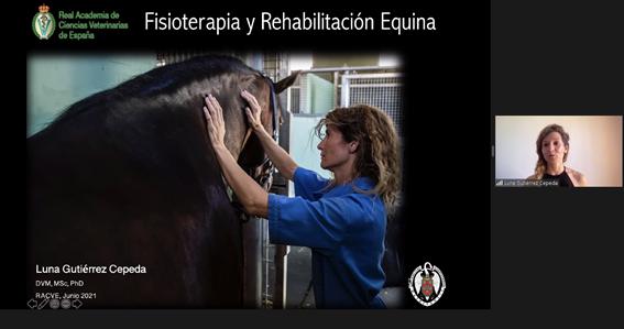 """Mesa redonda sobre """"Rehabilitación y Fisioterapia en Équidos"""" Las Dras. Serres Dalmau y Gutiérrez Cepeda intervienen en la sede de la RACVE"""